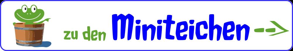 Miniteich - Infos, Tipps, Kaufen, Selber Bauen Miniteich Fur Den Balkon Ideen Bilder