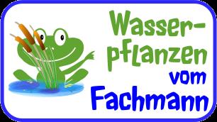 fachmann-wasserpflanzen