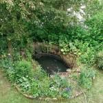 Miniteich - Teichschale sanieren, restaurieren