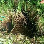 Miniteich, Teichschale sanieren 5