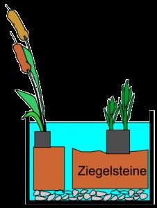 Aufbau einer Schichtung im Miniteich mit Ziegelsteinen