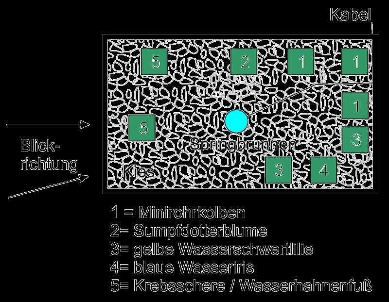 Beispiel für eine Bepflanzung im Miniteich