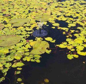 schwimmender Springbrunnen im Teich
