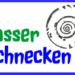 posthornschnecke